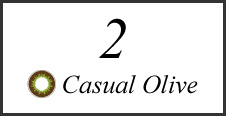 2 Casual Olive